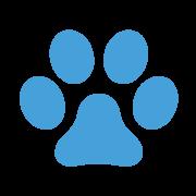 animali-ammessi